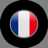 תרגום שפות לצרפתית